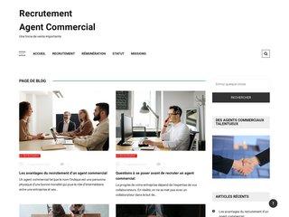 Détails : Emploi Commercial