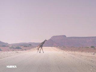 New Afrika