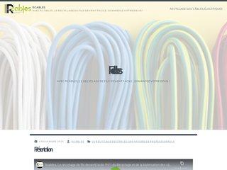 Détails : L'éparpillement des câbles électriques dans la nature
