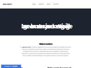 Détails : agence web blog