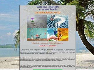 Guide pour comprendre la résilience au 5C