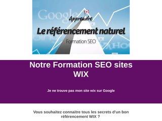 Votre site WIX en première page de Google