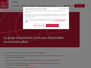 Apprentis d'Auteuil - Dons ISF