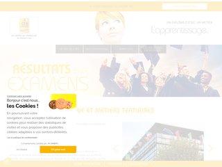 Détails : www.cfa-igslyon.com