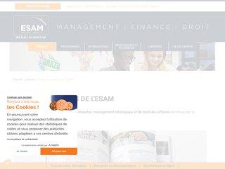 master entrepreneuriat Esam
