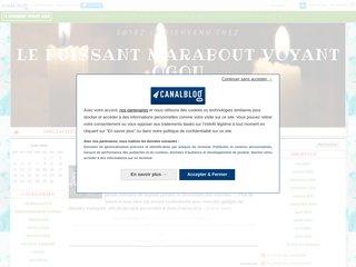 Détails : EXCELLENT PUISSANT MARABOUT VOYANT OGOU