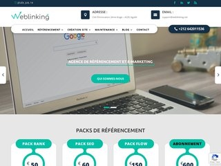 Détails : weblinking.net
