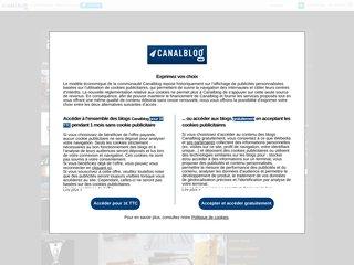screenshot http://acierkristin.canalblog.com/ Alliage