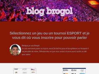 screenshot http://www.brogol.fr Brogol's blog