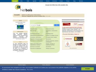 screenshot http://www.netbois.com <title>ANNUAIRE NOOGLE.  webmaster connect</title>