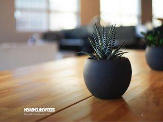 screenshot http://www.terredesrois.com La terre des rois
