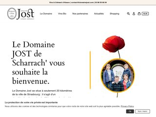 screenshot http://www.vinalsace-reyszjost.com Domaine reysz jost