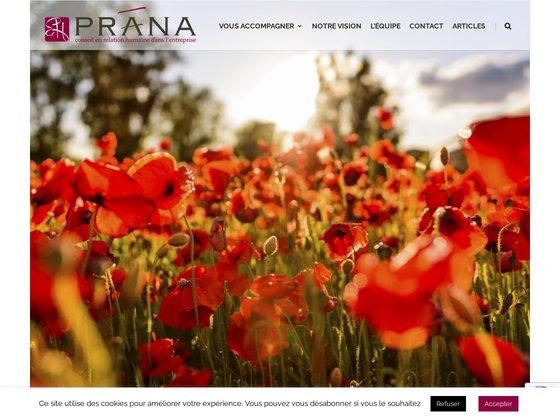 Prana Conseil, cabinet conseil en stratégies RH partout en France