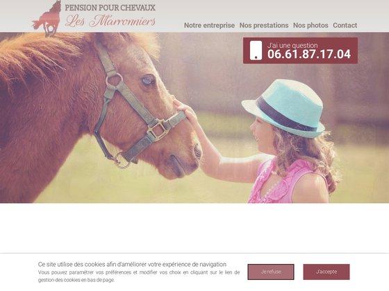 Pension pour chevaux en Charente (16)