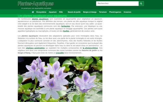 Plantes aquatiques - boutique de plantes d'aquarium